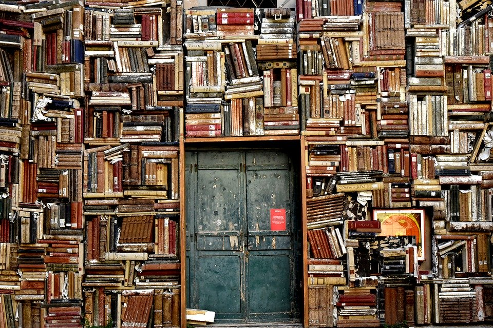 a wall of books that can be used for learning and adapting to a new culture.